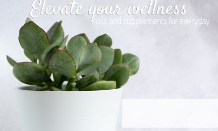 Class: Elevate Your Wellness