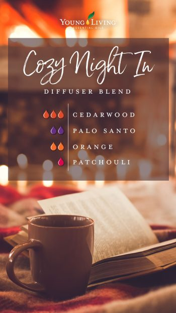 cozy night in diffuser blend